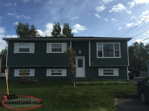 1 bedroom basement apartment for rent in gander november for Homes for sale with basement apartment