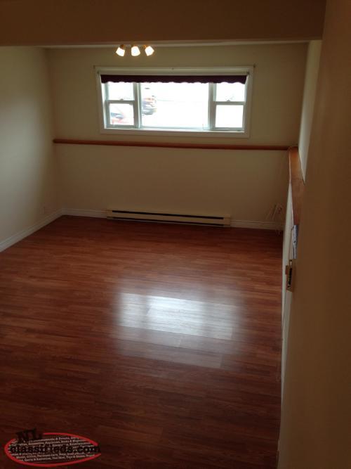 2 Bedroom Basement Apartment In Topsail Cbs
