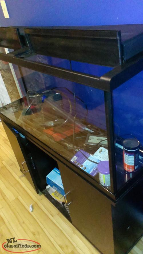 55 gallon fish aquarium and stand st john 39 s newfoundland for 55 gallon fish tank stand for sale