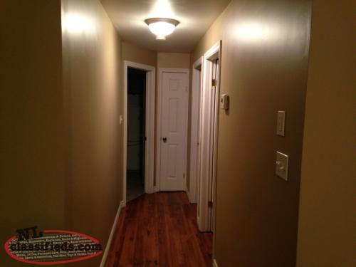 2 Bedroom Basement Apartment For Rent Goulds Newfoundland
