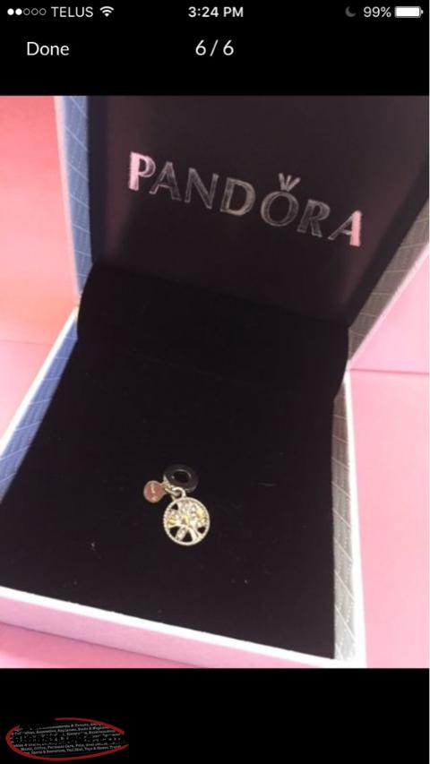 Pandora jewellery gander newfoundland for Pandora jewelry commercial 2017