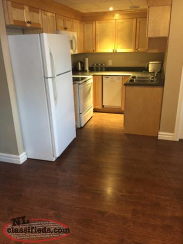 2 Bedroom Fully Furnished Apartment In Clarenville All Utilities Included Clarenville