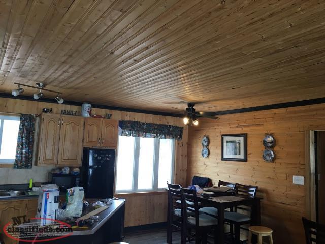 Cabin Forsale Millertown Junction Badger Newfoundland