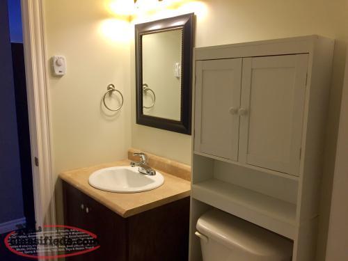 One Bedroom For Rent 700 Pou Gander Newfoundland