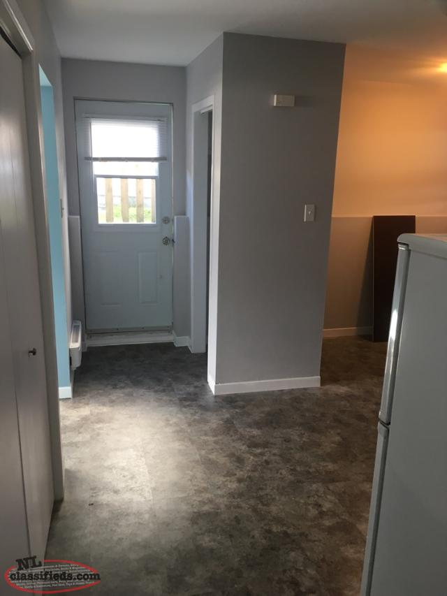 1 Bedroom Basement Apartment In Cowan Heights St John 39 S Newfoundland Labrador