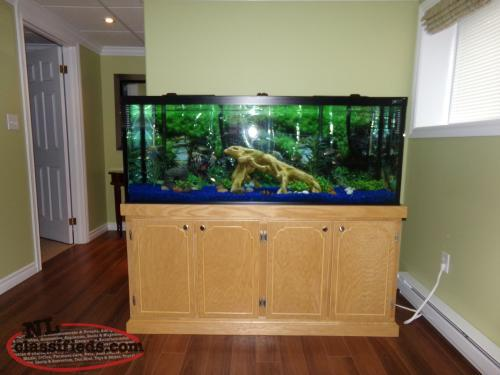 125 gallon fish tank for sale corner brook newfoundland for Corner fish tank for sale